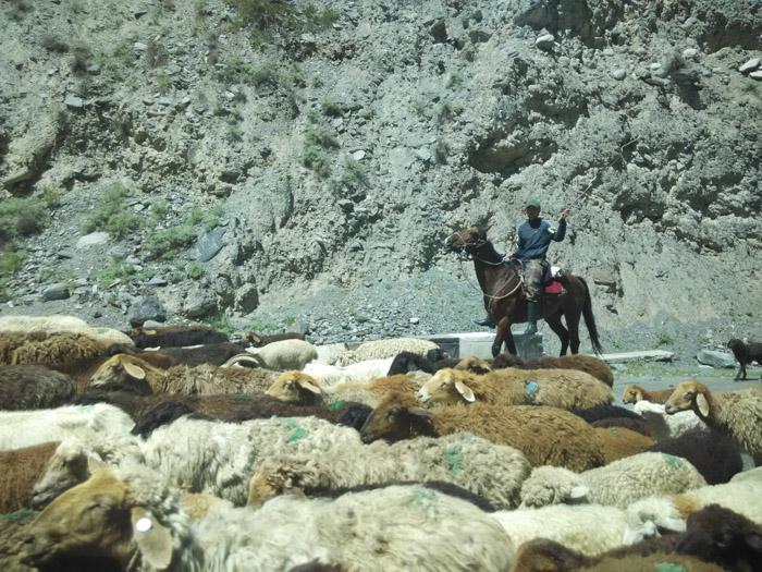6-Киргизстан-дорога3