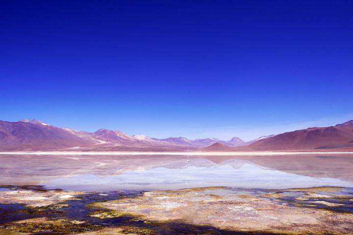 1-Болівія-лагуна-колорада8