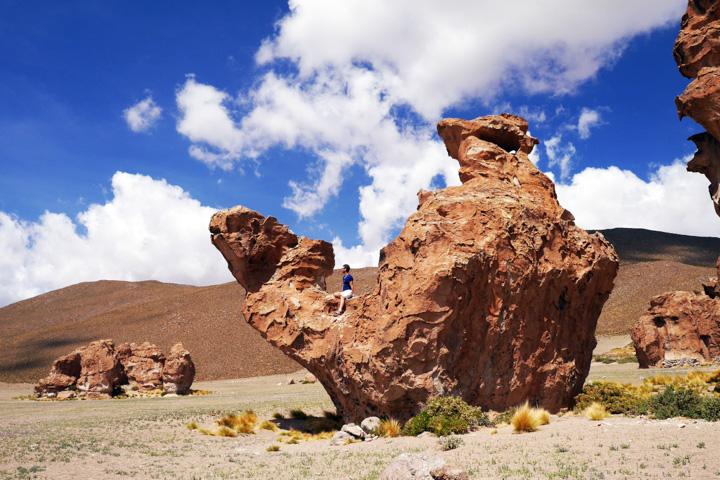 2-Болівія-сафарі6