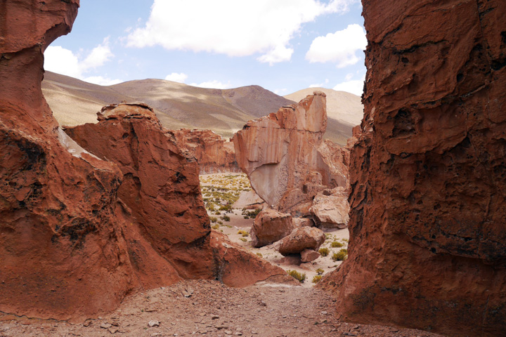 2-Болівія-сафарі7