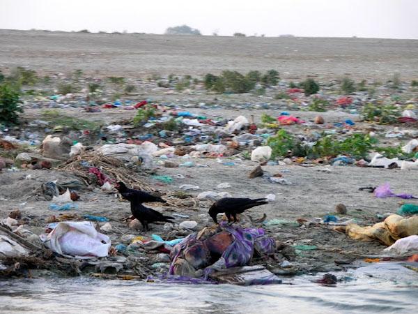 Труп на березі Гангу, Варанасі