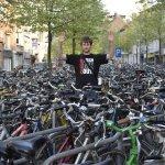 Фламанський тандем (Брюге та Гент)