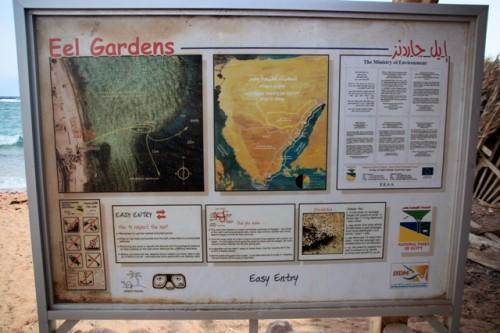Табличка перед заходом у воду в Дахабі