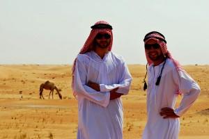 Дикі верблюди
