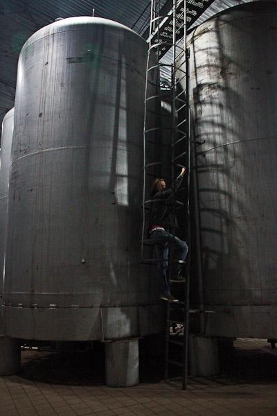 Фабрика вина в Береговому