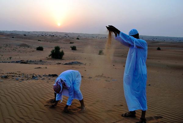 Захід сонця в пустелі