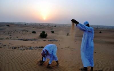 Пазл склався – 100 країнам цього року бути! Додається пакетний тур в Туніс! Хто з нами?