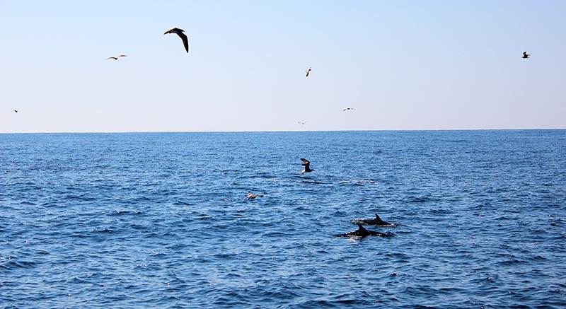 Риболовля 22.01.13 (43)