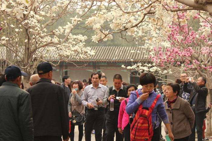 13-Пекін-літній-палац1