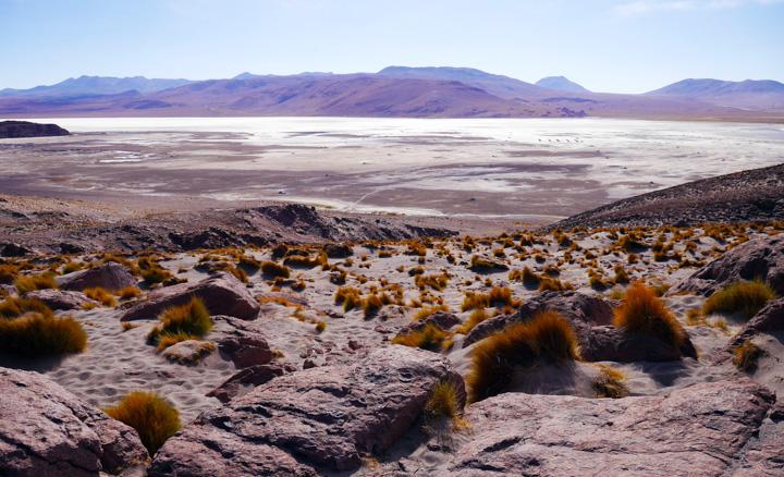 1-Болівія-лагуна-колорада26