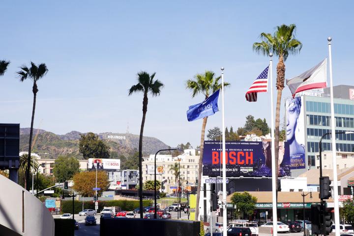 1-Лос-Анджелес12