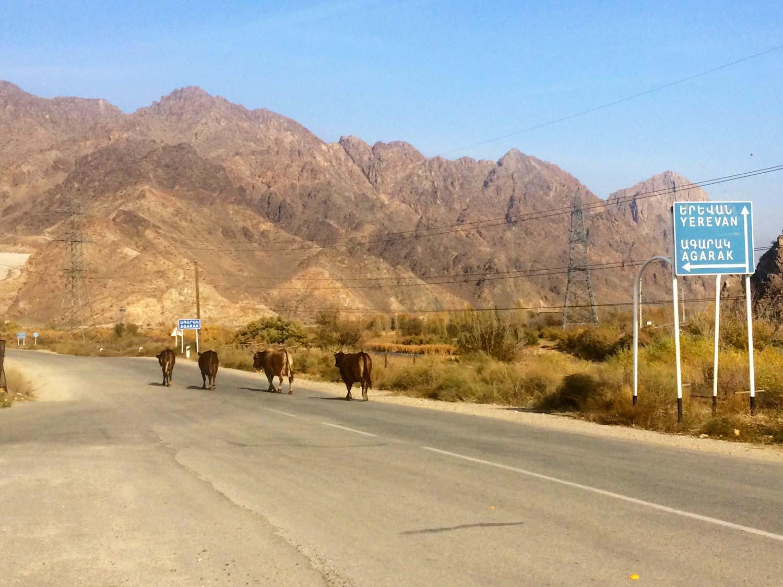 Вірменія. Гори по дорозі