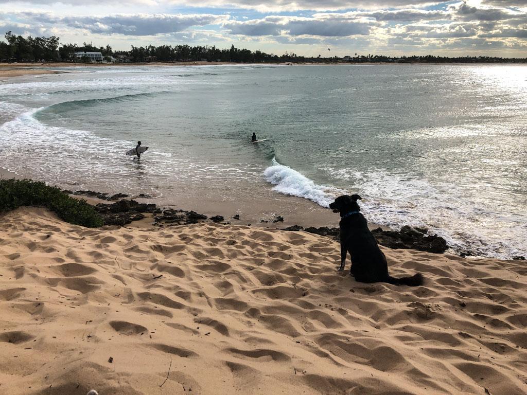 Мозамбік, пляж Тофо